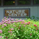 You just HAVe to visit the Nature Center when in the park.