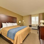 Red Carpet Inn Manheim