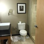 Cambria Suites Ft. Lauderdale, Airport South & Cruise Port Foto