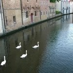 Europ Hotel, Brujas - Canal