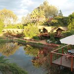 Wildebeest Eco Camp an Ideal vacation haven while in Nairobi