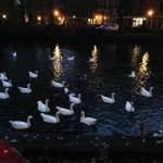 Bed and Breakfast Amsterdamの写真
