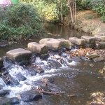 Stepping stones (towels not supplied)