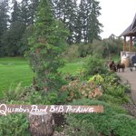 Foto de Quimby's Pond Bed and Breakfast