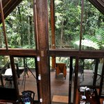 Foto van The Canopy Rainforest Treehouses and Wildlife Sanctuary