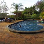 Bilde fra The Plantation Lodge & Safaris