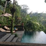 ภาพถ่ายของ Bidadari Private Villas & Retreat - Ubud