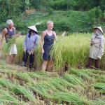 Duc Minh Travel - Day Tours