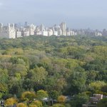 View of Central Park from room