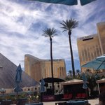 Mandalay Bay and Delano hotels