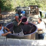 """Fradelizio Family making our """"Napa Valley Wine From The  Barrel"""""""