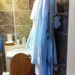 Towel rail and toilet