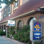 Photo of BEST WESTERN PLUS South Bay Hotel