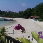 Phi Phi Natural Resort resmi
