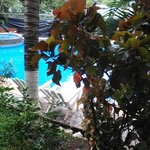 Photo of Hostel Plinio