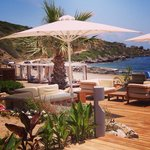 The beach bar ������