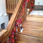 The bears on the stairs