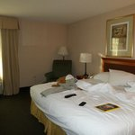 Holiday Inn Express Chicago-Midway Airport resmi
