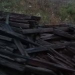 Discarded Railroad Ties