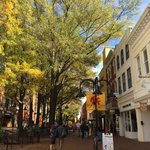 Adjoining Open Air Mall in Historic Charlottesville, VA