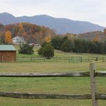 Foto de Fox Hill Bed & Breakfast and Cottage Suites