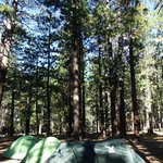 Photo of North Rim Campground