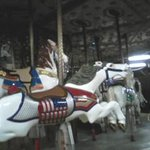 Beautiful horse carrousel