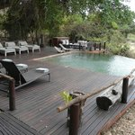 Photo de Lion Sands River Lodge