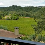 The Wine Country Inn照片
