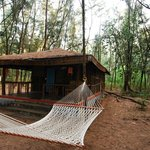 Jungle Lodges Devbagh Beach Resort