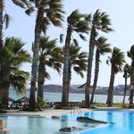 Paros Paradise! We spent 6 glorious days at the poolside!