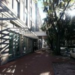 Bild från SpringHill Suites Savannah Downtown/Historic District