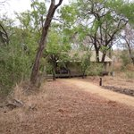 Foto de Honeyguide Tented Safari Camps