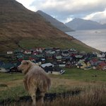 typical view on the Faroe Islands