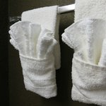 Flower Towels