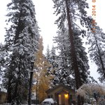 Photo de Tenaya Lodge at Yosemite