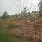 View through window screen of landscaping on hill