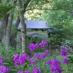 Billede af Snug Hollow Farm Bed & Breakfast