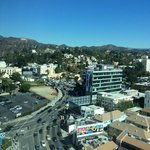 View from 15th floor of Loews Hollywood (yes, sign is there if you look!)