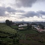 Ooty - Elk Hill, A Sterling Holidays Resort Foto