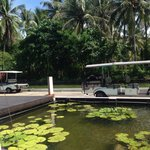 Photo de Twin Lotus Resort & Spa