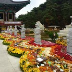 Donghwasa temple grounds
