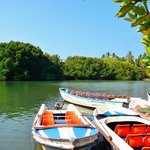 Sri Lanka Banja Tours + Chintha's Cooking Lessons - Private Day Tours