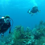 Blue Water Divers October 2014