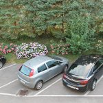 parking and flowers