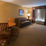 Photo of Holiday Inn Express & Suites Roselle