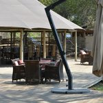 Wilderness Safaris Ruckomechi Camp의 사진