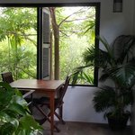 outlook from dining room