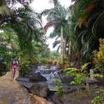 great hot springs on the Arenal volcano tour