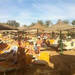Sonesta Beach Resort & Casino의 사진